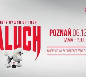 Paluch • Czerwony Dywan • Poznań